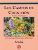 advaita LOS CAMPOS DE COGNICION (SESHA).jpg